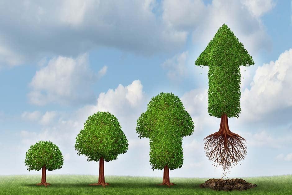 Cómo estructurar el área de RRHH para apoyar el crecimiento de la Pyme